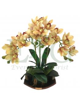 Orchid Cymbidium (Artificial)